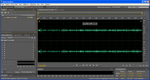 Загруженный в Adobe Audition mp3 файл, из которого будем убирать шум - 3
