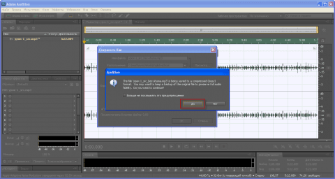 Соглашаемся с предупреждением программы Adobe Audition - 9